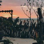 Foto Blue Bayou uitzicht